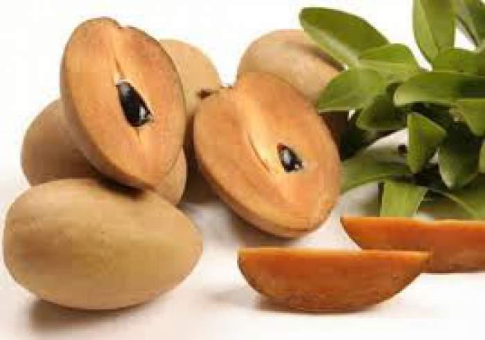 चीकू खाने के फायदे और नुकसान – Chiku Khane ke Fayde or Nuksan in Hindi