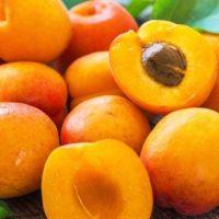 खुबानी खाने के फायदे और नुकसान Khubani Khane Ke Fayde or Nuksan in Hindi