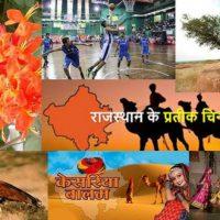 राजस्थान राज्य के प्रतीकों की सूचि List of Symbols of Rajasthan state in Hindi