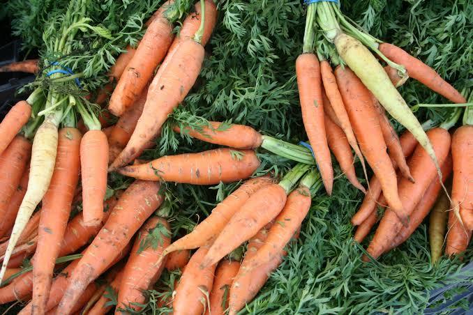 गाजर खाने के फायदे और नुकसान Gajar Khane Ke Fayde or Nuksan in Hindi