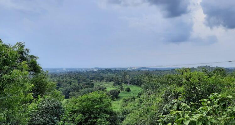 एक कदम प्रकृति की ओर – A step towards nature