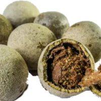 बेल खाने के फायदे और नुकसान Bel Khane Ke Fayde or Nuksan in Hindi
