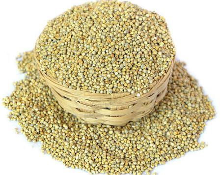 बाजरा खाने के फायदे और नुकसान Millet Khane Ke Fayde or Nuksan in hindi