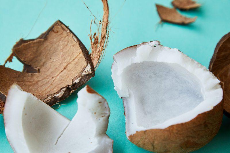 नारियल खाने के फायदे और नुकसान Nariyal Khane Ke Fayde or Nuksan in Hindi